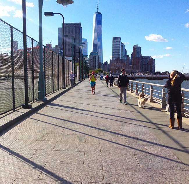 TCS New York City Marathon Training Asics